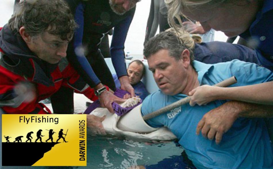 nurse-shark-help